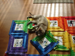 RB Helping me arrange the log cabin quilt blocks