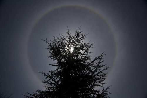 solar halo2b