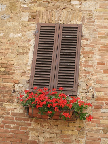 Flowers in window box, San Gimignano, Italy