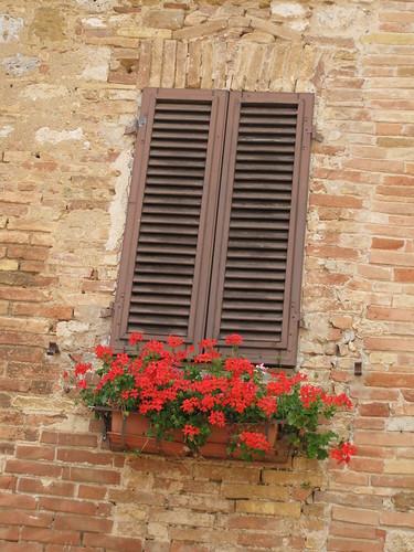 Flowers in window box, San Gimignano, Italy