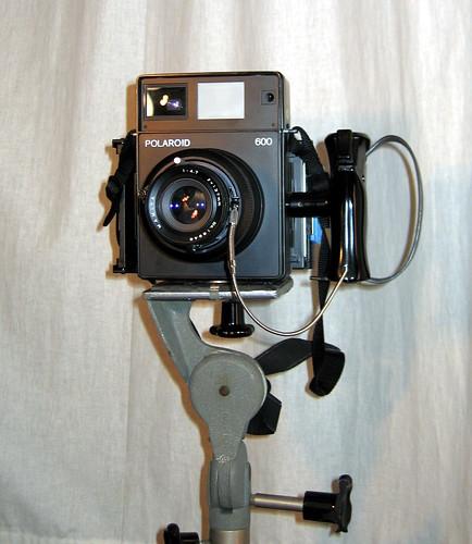 600se polaroid back