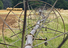 Oklahoma Irrigation (hz536n/George Thomas) Tags: summer green oklahoma perkins 2008 cs3 canon30d canonef70200mmf4lusm