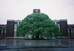 Kyoto University - 1