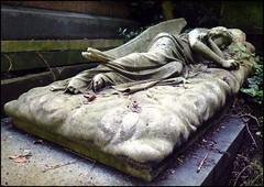 Where Angels Sleep (Cul 9) Tags: london cemetery graveyard angel tomb highgatecemetery westcemetery digitalcameraclub