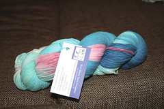 Bare sheep yarn skein