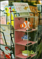 Akindynos clownfish (jchanghk) Tags: museum pen aquarium marine taiwan olympus clownfish national frame half ft 100 agfa biology 墾丁 ultra kenting 海洋生物博物館 akindynos