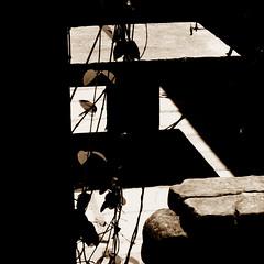 (fusion-of-horizons) Tags: building church architecture religious europe religion churches courtyard christian monastery romania christianity eastern orthodox convent ecclesiastical bucharest bucuresti biserica romana rumania romanian bukarest roumanie orthodoxy bor bucarest stavro ortodoxa manastirea lipscani manastire arhitectura bucureti cladire ortodoxie stavropoleos curte bucureti  ortodoxia biseric romn edificiu centrulvechi mnstire sfintiiarhanghelimihailsigavril arhitectur brncovenesc mnstirea  ortodox cldire cretin cretinism bisericeasc