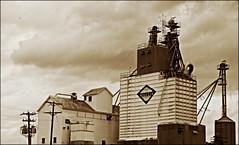 Augusta County Grain Elevator (johnmiller613) Tags: county storm sepia virginia highway elevator grain july richmond 09 va augusta jefferson agriculture davis avenue 2008 staunton 250