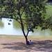 Sombra na Quinta da Boa Vista