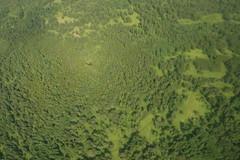 Specular - taiga (jeandparis) Tags: travel forest russia halo siberia