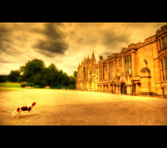 The Castle and the King (Martyn Starkey) Tags: newsteadabbey cavalierkingcharles firstquality lookslikeacastle jorja mywinners thelittledoglaughed platinumphoto anawesomeshot aplusphoto goldstaraward damniwishidtakenthat photoexel