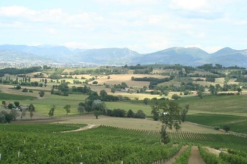 Umbria view