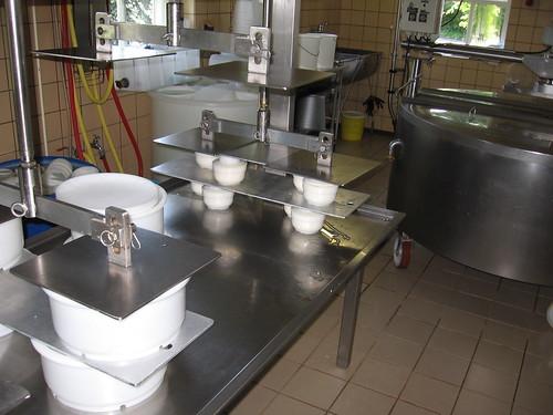 cheesemaking 0009