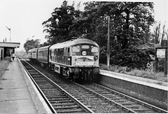 Last train, Rugby to Peterborough... (rugd1022) Tags: 2 last train rugby 1966 line type peterborough sulzer lilbourne d5036