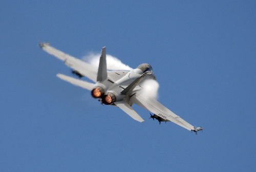 Fighter Airplane picture - F-18 Super Hornet