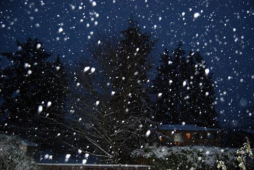 21 - Still Snowing