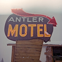 Antler (robert schneider (rolopix)) Tags: color 120 6x6 film sign mediumformat square neon december kodak jackson snowing greatwall wyoming expired 2008 jacksonhole antler outdated wy wyo outofdate vps antlermotel vericolor df2 120620 vericoloriii fixedshadows believeinfilm