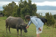 Me and A Water Buffalo