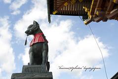 fushimi inari taishi.*3* (*hui-mei-98) Tags: japan nikon kyoto december sigma   2008 d300 kinki  20mmf18 fushimiinaritaishi d2xmode2 fromkyotowithlove
