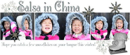 2008 winter header, designed by Blogs by Danielle