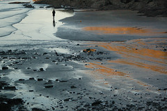 mood (tonecoach) Tags: sea woman beach girl mood walk solitary pembrokeshire