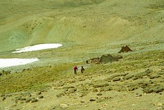 Lamma La 5120m (reurinkjan) Tags: 2002 yak nikon tibet everest dri tingri jomolangma tibetanlandscape lammala janreurink brogpa བོད། བོད་ལྗོངས།