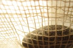 weaving III (sculptress studio) Tags: linen weaving cigarboxloom stonepocket