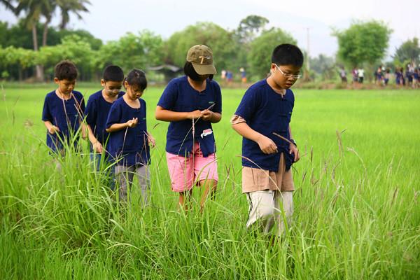 เตรียมฟื้นฟูอาชีพ เกษตรไทย