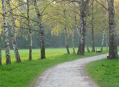 Frühling im Stadtpark (herbswitch) Tags: stadtpark chemnitz