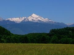 Gjeravica in June (kosova cajun) Tags: mountain nature landscape meadow kosova kosovë peisazh deçan bjeshkëtenemuna accursedmountains snowcappedpeak natyrë deçani gjeravicapeak majaegjeravicës rrafshiidukagjinit