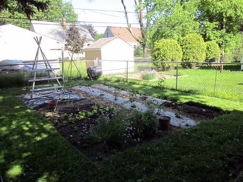 2011 Garden - June 19