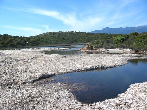 Etang du ruisseau de Saparelli