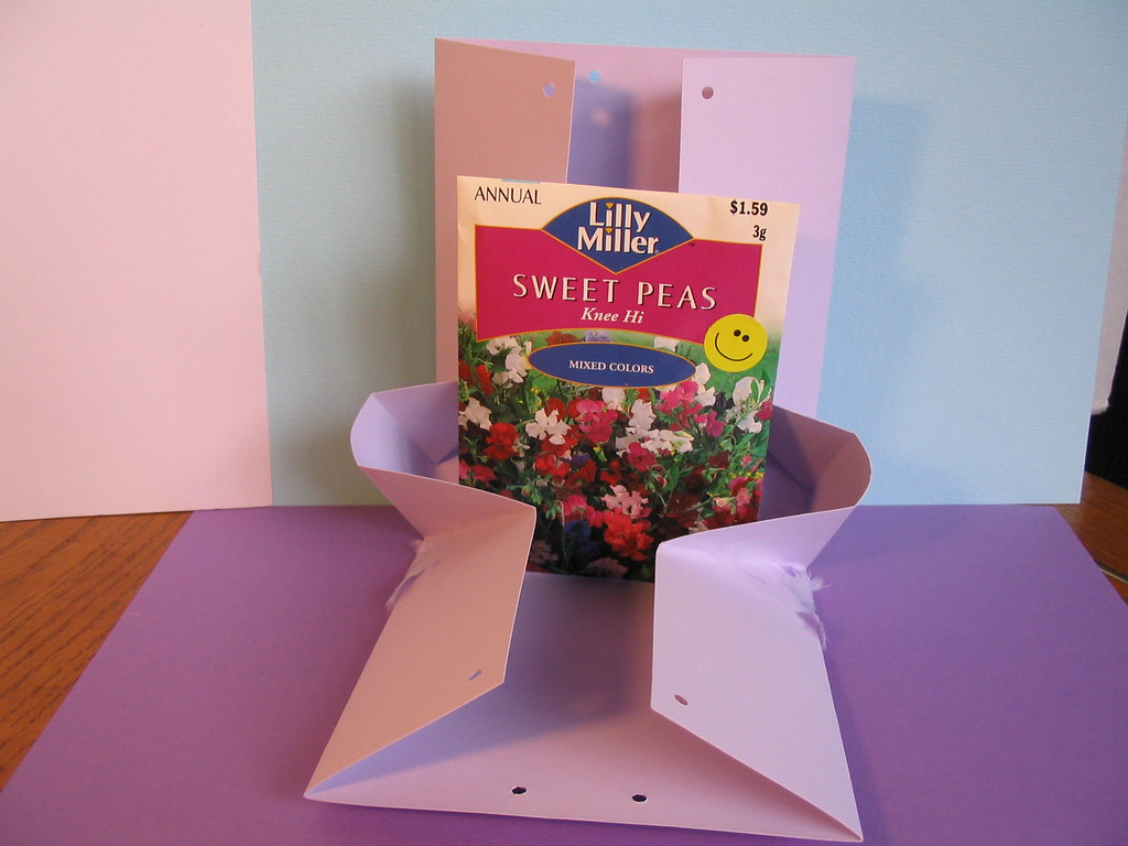 Flower seeds gift bag 1 of 2