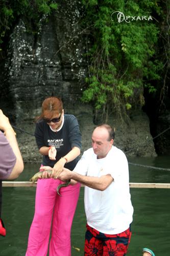 handling eel