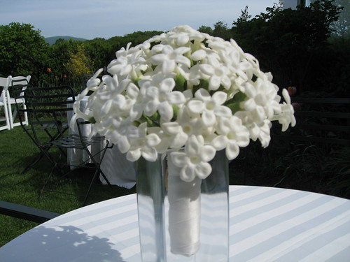 Bridal bouquet, bridal bouquet of all Stephanotis. Stems wrapped with ivory satin ribbon.