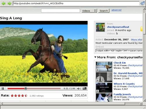 GTK Webkit Youtube