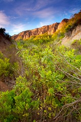 The Cliffs at San Onofre (Nick Carver Photography) Tags: california park ca travel blue sunset red summer orange cliff plants usa cloud green beach nature rock vertical clouds landscape outdoors coast landscapes rocks nick reserve brush cliffs hills carver wilderness lush southerncalifornia westcoast sanonofre sandiegocounty nickcarver sanonofrestatebeach ncpfineartprint