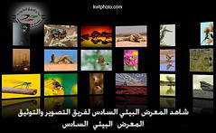 our 6th photography exhibition in kuwait (khaleel haidar) Tags: our sports canon photography exhibition kuwait  majed 6th q8       haidar  khaleel       kvwc   khaleelphtocom