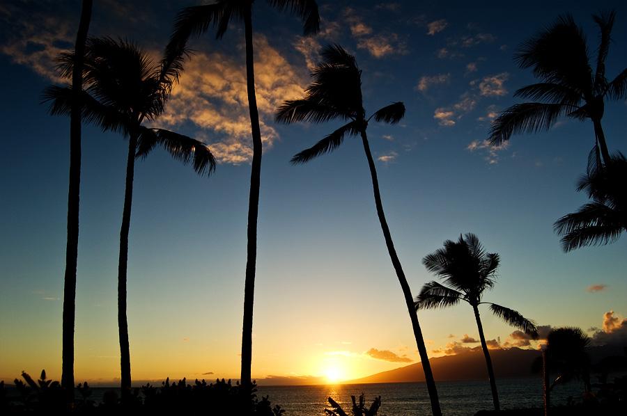 Maui_0185
