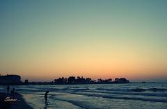 Alex .. 2008 (s@mar) Tags: sunset beach alex alexandria mediterranean sony egypt cybershot مصر البحر الغروب dscw55 الاسكندرية المتوسط المعمورة