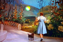 Wizard of Oz TV Shot (Walker Dukes) Tags: california bridge flowers blue trees red sky woman plants art film girl beauty television animal yellow socks painting hair studio screenshot shoes picnic basket dress young fake hills hollywood heroine movies filmstill actor backdrop mgm legend diva tcm k9 moviestill moviestars oldmovies metrogoldwynmayer