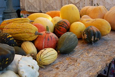 Signs of fall at the farmers' market