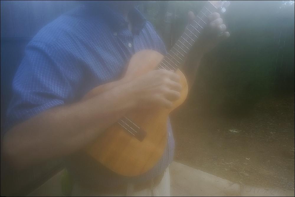 ukulele ©2008 RosebudPenfold