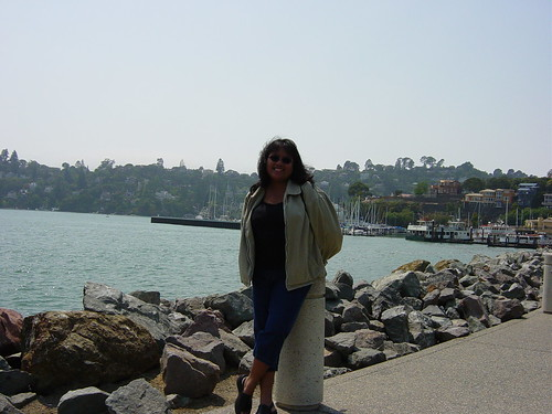 afternoon in Tiburon