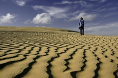 New Zealand - a land of extremes (Kenny Muir) Tags: new sand wind ripple dunes zealand northland sandscape 90milebeach tepaki