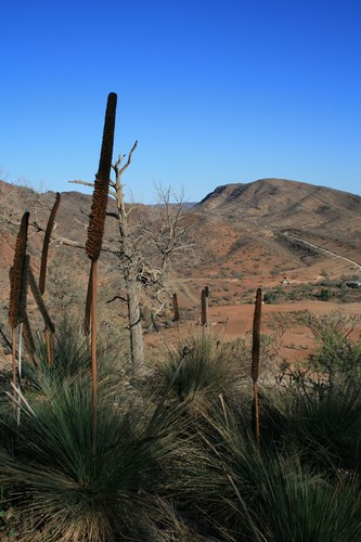 Arkaroola skyline