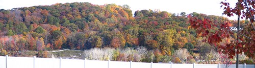 Danbury Fall Panorama