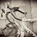 BikeTour2008-688_b&w