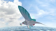 ocean flish volamar