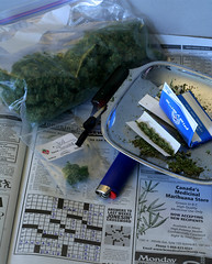 Canada's Marijuana Store (Professional Recreationalist) Tags: green bag ma j stash weed fattie jay russell tea outdoor smoke crossword bob indoor puzzle pot hydro papers shit oil thc shake mayo gram bud lighter players dope brucedean professionalrecreationalist monday marijuana roach skunk doobie pound hash blunt homegrown herb sneaky maryjane cannabis joint medicinal chronic nard tar lid reefer hooter sativa hemp bic hashish charas marihuana ganja muggles trimmings pinner splif ounce indica locoweed bcbud twistie bhang gatewaydrug mondaymagazine kannabis puttyhash mafen gigglestick